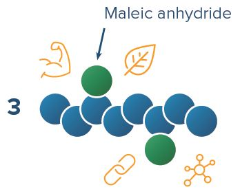 maleic anhydride acti-tech backbone